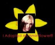 I got an Amir Flower!!
